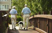 Veilige alternatieven voor Rimadyl voor honden