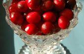 Toepassingen voor verse Cranberries