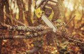 Het aanpassen van de carburateur voor een Poulan-Woodshark