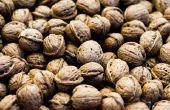 Wanneer zijn walnoten klaar om de Pick?