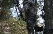 Hoe om te schieten een hert met een boog & pijl uit een boom-Stand