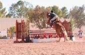 Hamstring blessures bij paarden
