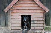Zelfgemaakte isolatie voor hondenhokken