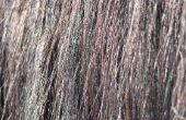 Natuurlijke Remedies voor verwijdering van haarkleuren