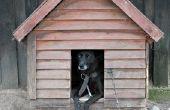 Hoe maak je een hondenhuis uit Popsicle stokken