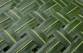 Hoe vlecht palmbladeren voor een ontwerp met bloemen