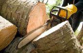 Hoe te huur een Lift als u wilt bijsnijden van bomen