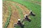Definitie van de industriële landbouw