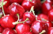 Hoe maak je een fruitmand van klei