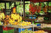 Lijst van Latijns-Amerikaanse voedsel