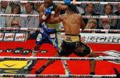 Het beheren van een bokser