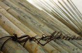 Hoe te behandelen van Raw bamboe voor het maken van meubels