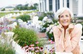 Regels voor het pensioen van uw eigen zaken en opstelling van de sociale zekerheid