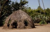 Welke Native Americans woonde in Wickiups?