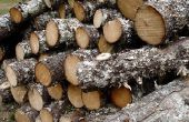 Buiten hout-branders feiten