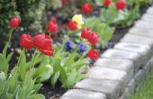 Hoe maak je verhoogde bloembedden