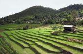 Hoe terras een heuvellandschap