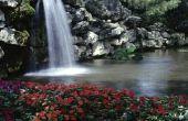 How to Make uw Plastic vijver en watervallen er als stenen en rotsen uitzien