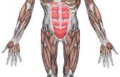 Oorzaken van chronische spierpijn
