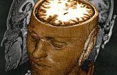 De geschiedenis van de hersenspoeling