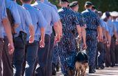 Klassen te nemen tot een politieagent
