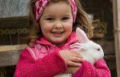 Hoe te herkennen van de ziekte in je konijn