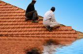 Wat Is de overstroming verzekering?