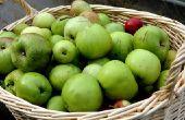 Gevaren van appelzuur