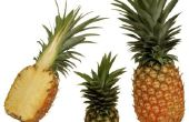 Wanneer kan een Baby hebben ananassen?