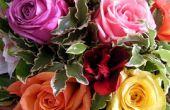 De betekenis van verschillende gekleurde rozen