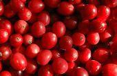 Hoe bewaart u verse Cranberries