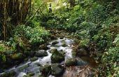 Hoe te verwijderen River Rock van een tuin Bed