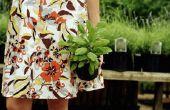 Hoe te planten verkopen van een huis kwekerij Business