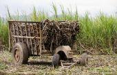 Wat zijn sterke drank gemaakt van suikerriet?