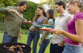 De deelstukken van goed vlees voor het grillen van partijen