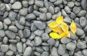 Soorten grond afdekking stenen van de tuin