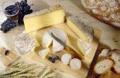 Bacteriën gebruikt voor het maken van kaas