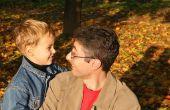 Omgangsregeling voor vaders in Illinois