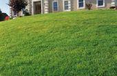 Landscaping Ideeën voor een verhoogde Ranch
