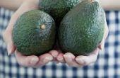 Hoe bewaart u rijpe avocado 's