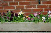 Plannen voor het maken van bloembakken