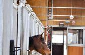 Hoe te stoppen met een paard van het kauwen van hout