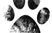 Hoe om te schakelen van mijn hond Paw Print in een tatoeage