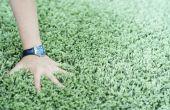 Hoe ter dekking van een lelijk tapijt in een verhuur-eenheid