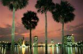Hoe een klacht indienen bij het ministerie van arbeid in Florida voor niet betaling van het loon