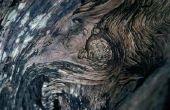 Kleuren die een aanvulling op de kleur van de basis van Drijfhout