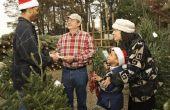 Hoe Open je een kerstboom veel