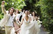 Hoe om te versieren voor een bruiloft receptie goedkoop