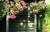 De beste bloemen voor het ophangen van planten