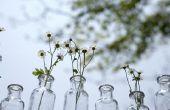 Ideeën voor glazen vazen